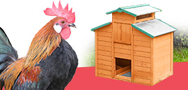 Poulaillers et matériel volailles
