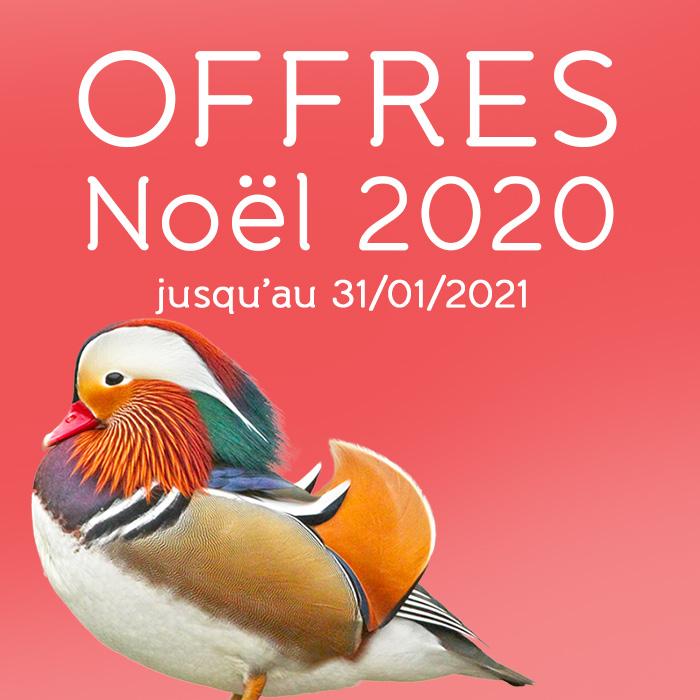 Offres NOEL 2020