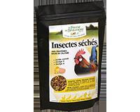 Insectes séchés