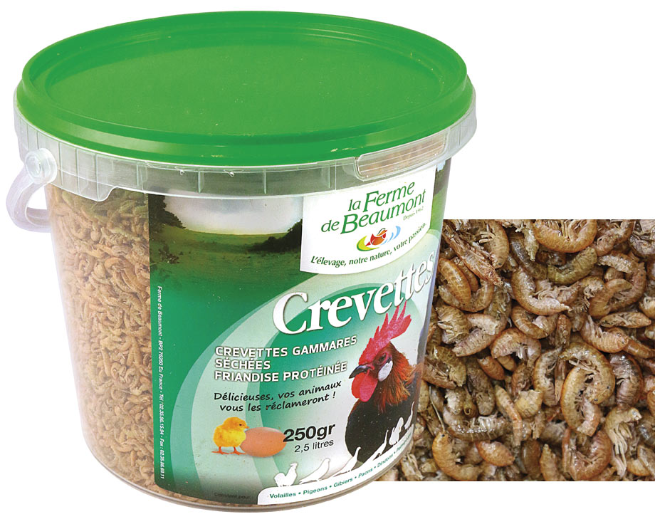 Crevettes déshydratés