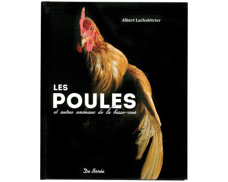 Les poules et les autres animaux de la basse-cour