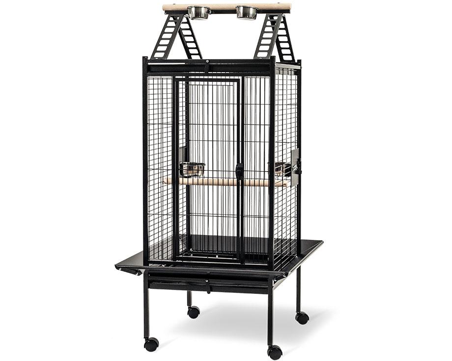 Cage Lucia