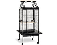 Cage Kambela