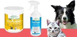 Prenez soin de vos chiens et chats