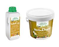 SoluCox 250 ml + HerboDigest 375 gr