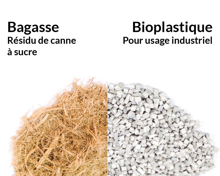 Un plastique d'origine végétale issu de sources renouvelables
