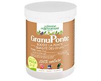 GranuPonte