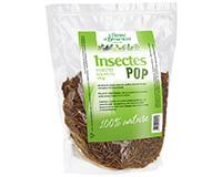 Insectes soufflés Pop