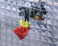 Abreuvoir automatique petits oiseaux