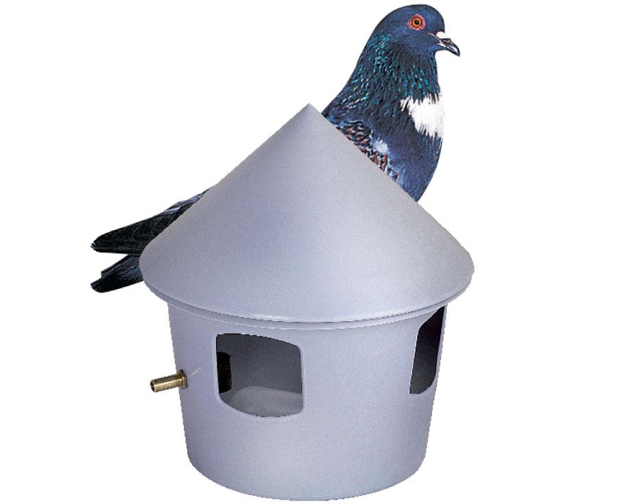 Abreuvoir automatique pour pigeons