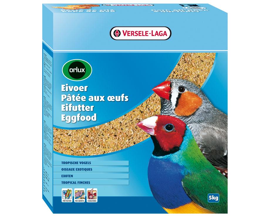 Pâtée oiseaux exotiques