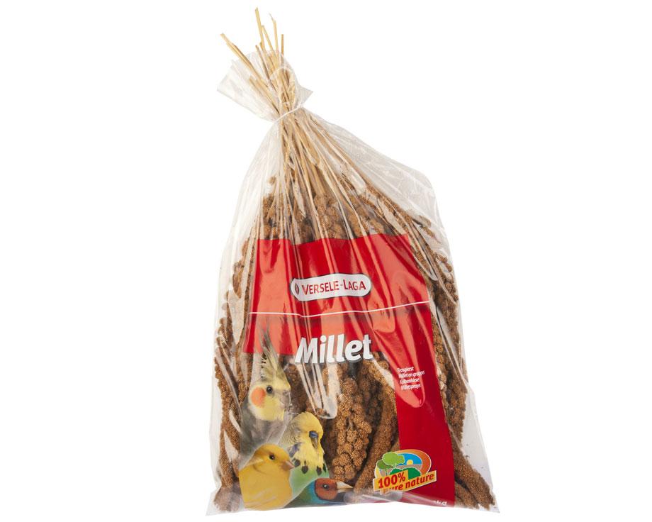 Millet en grappe 300gr