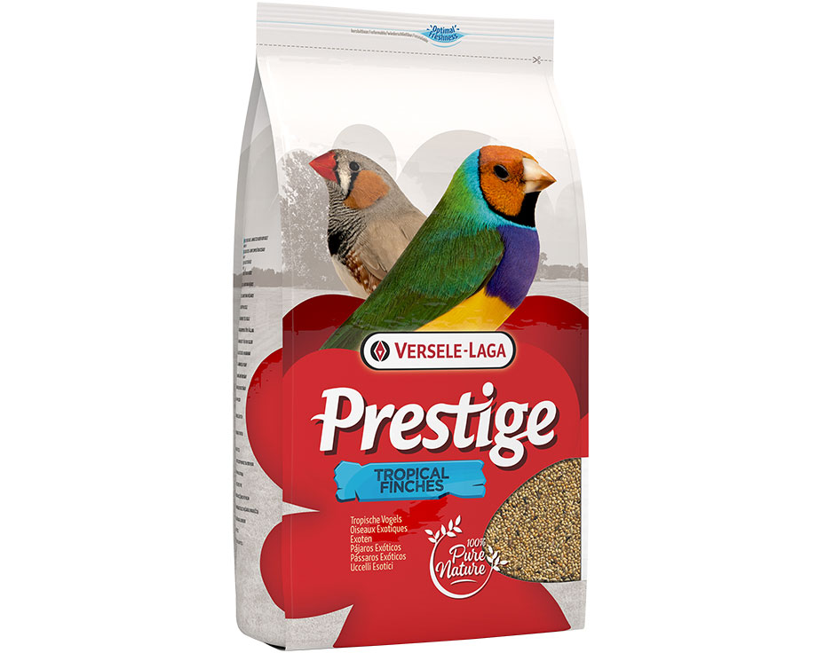 Tropical Finches Prestige
