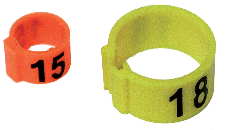 Bague à clip plastique numérotée