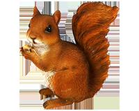 Écureuil noisette en résine