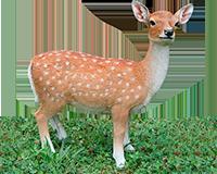 Bambi en résine