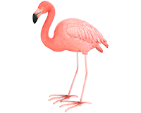 Flamand rose en résine