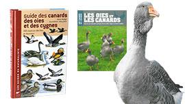 Livres Canards, oies et cygnes