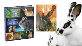 Livres Lapins cuniculture