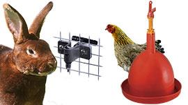 Abreuvoirs automatiques volailles, distributeurs d'eau pour animaux