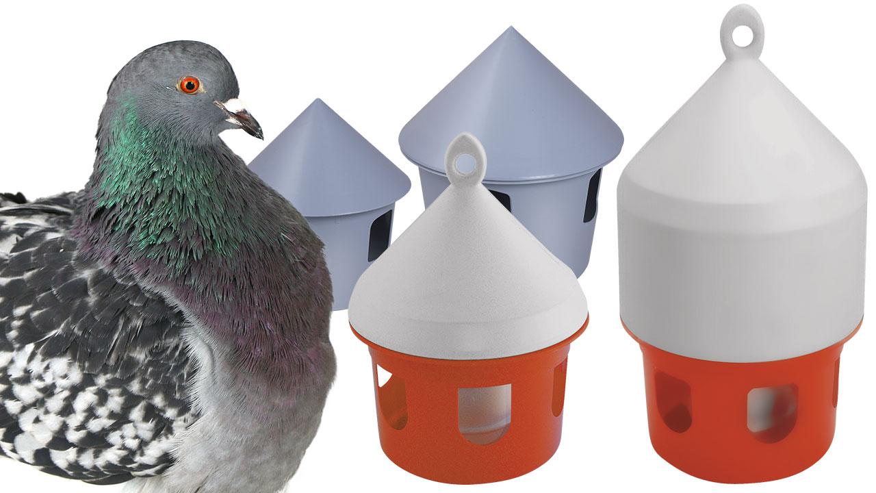 abreuvoirs pigeons la ferme de beaumont. Black Bedroom Furniture Sets. Home Design Ideas