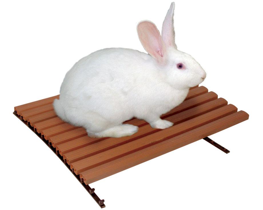 Caillebotis plastique pour lapins