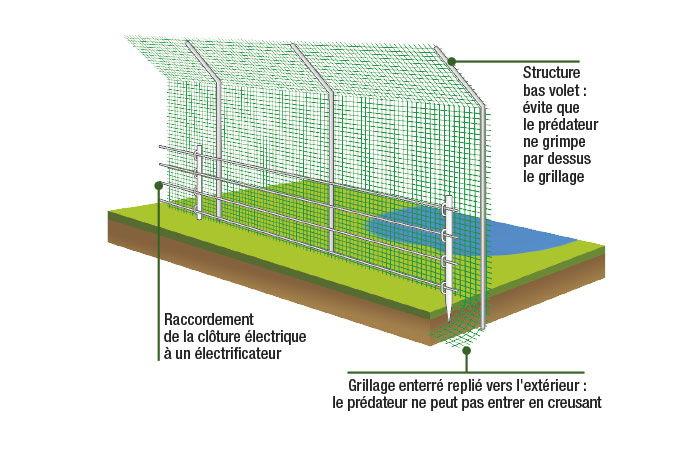 Grillage et clôture de parc animalier avec bas volet contre les prédateurs