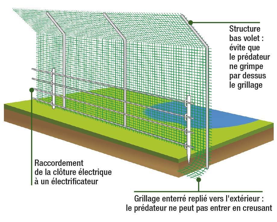 conseils de la ferme de beaumont la ferme de beaumont. Black Bedroom Furniture Sets. Home Design Ideas