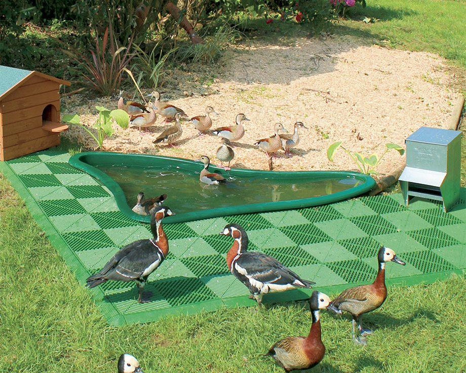 D co bassin d ornement pour jardin dijon 32 dijon dijon meteo heure par heure dijon - Bassin canard d ornement pau ...