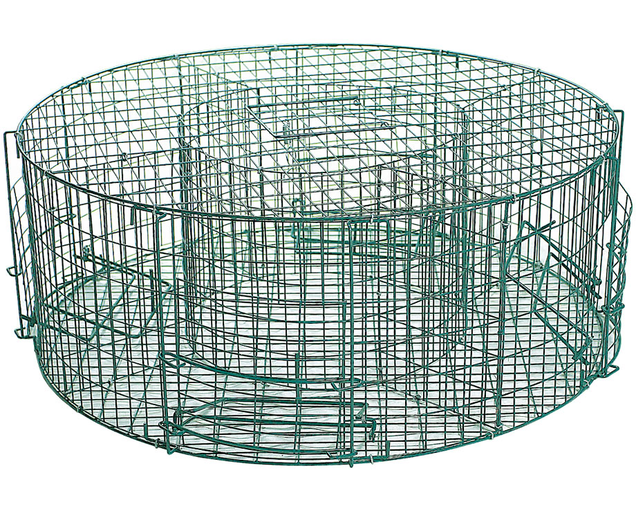 pige pie 4 entres la ferme de beaumont pigeage. Black Bedroom Furniture Sets. Home Design Ideas