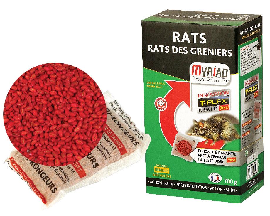 bl empoisonn myriad rats des greniers la ferme de beaumont. Black Bedroom Furniture Sets. Home Design Ideas