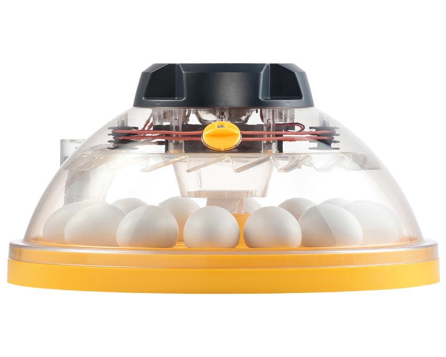 Couveuse Brinsea Maxi II EX