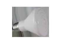 Ampoule en céramique 60W