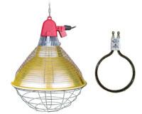 Éleveuse PRO et lampe filament de carbone