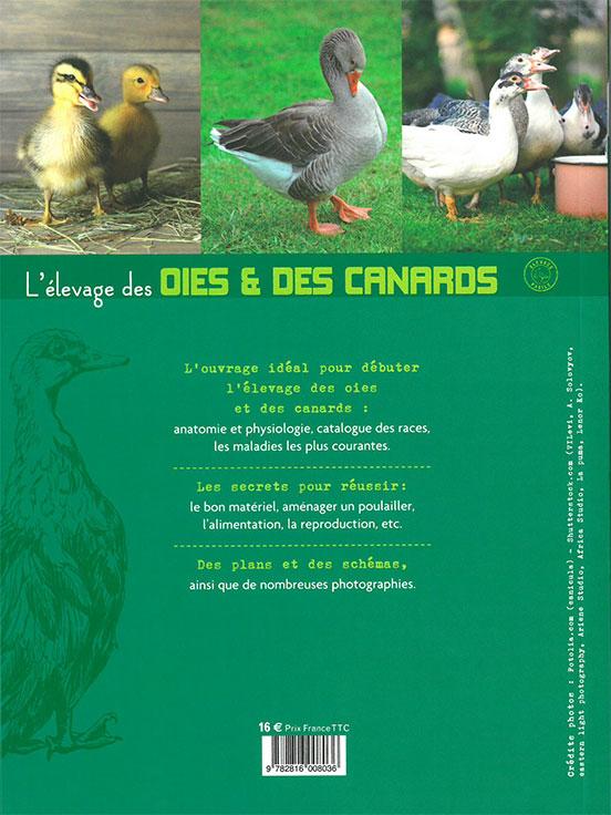 L'élevage des oies et canards
