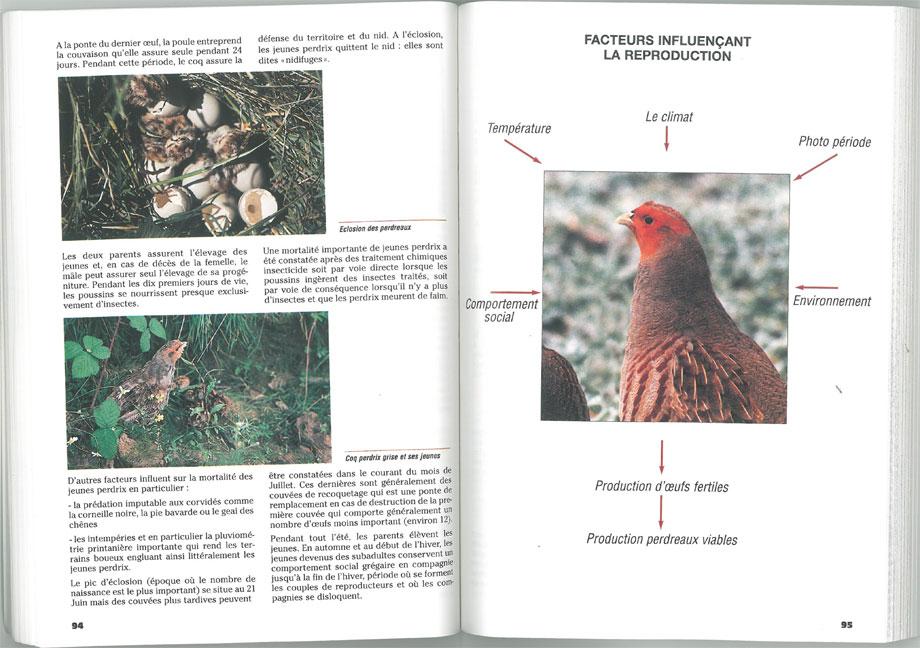 L'élevage du gibier à plumes