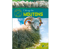 L'élevage des moutons