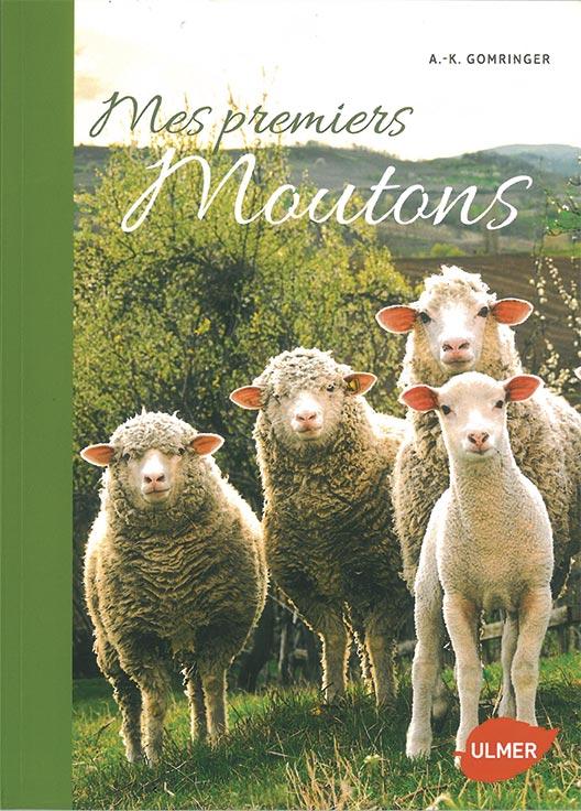 Mes premiers moutons