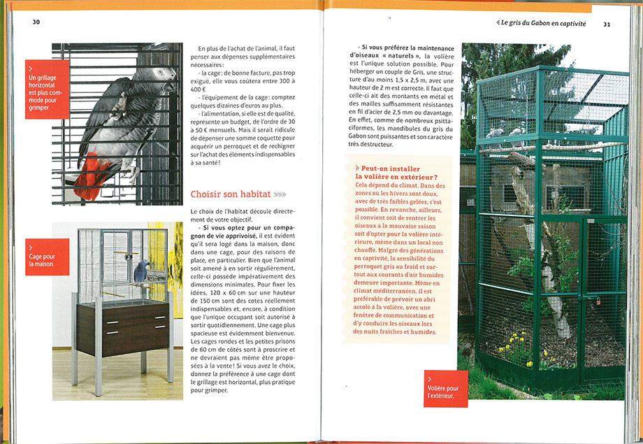 Livre Perroquet gris du Gabon