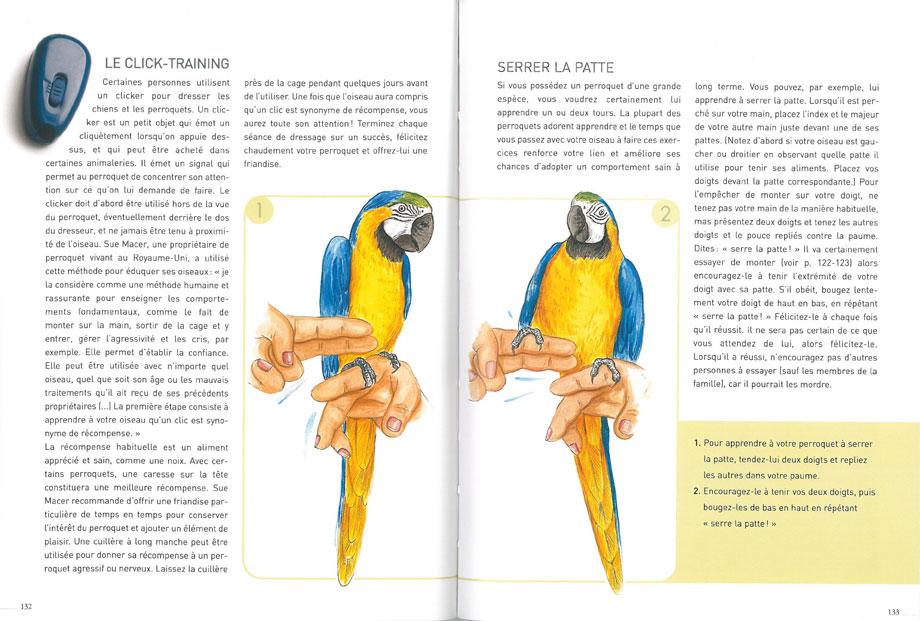 Livre Vivre avec un perroquet