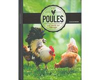 Poules, tout savoir sur l'élevage