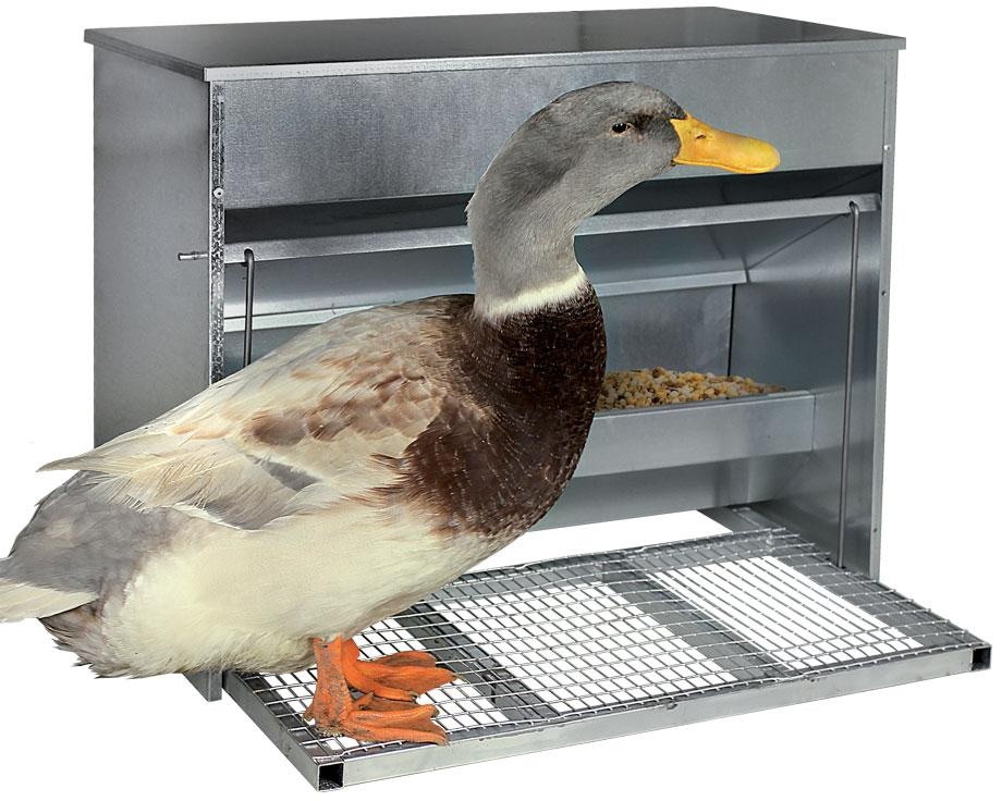 mangeoire canard poule oies cygnes anti gaspi grand mod le l. Black Bedroom Furniture Sets. Home Design Ideas