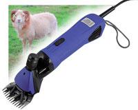 Tondeuse électrique à moutons