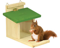Mangeoire écureuil