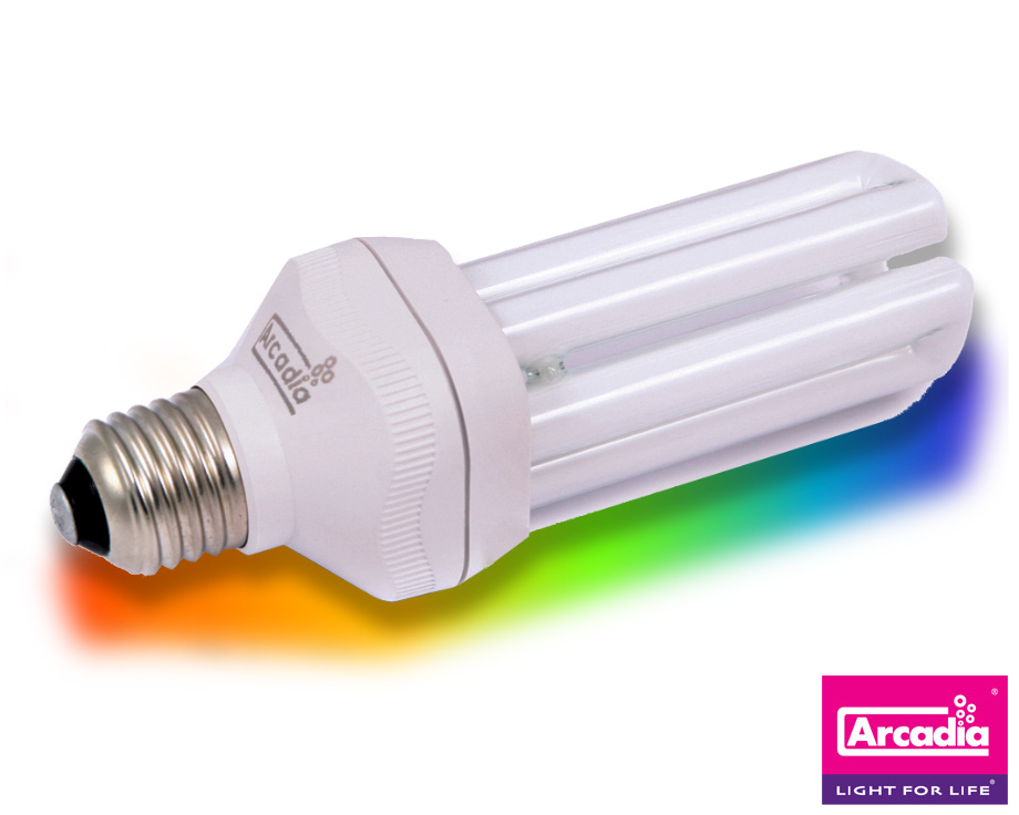 Lampe Arcadia UV compacte oiseaux