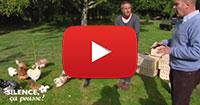 Vidéo Youtube Silence çà pousse Poules Ferme de Beaumont