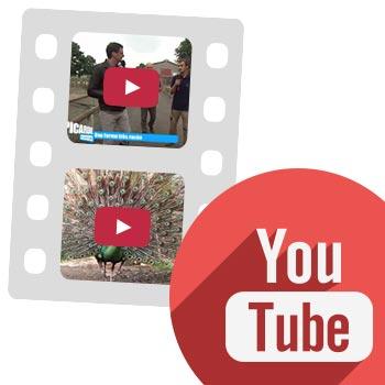 Chaîne Youtube de la Ferme de Beaumont