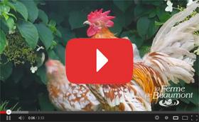 Cha�ne Youtube Ferme de Beaumont
