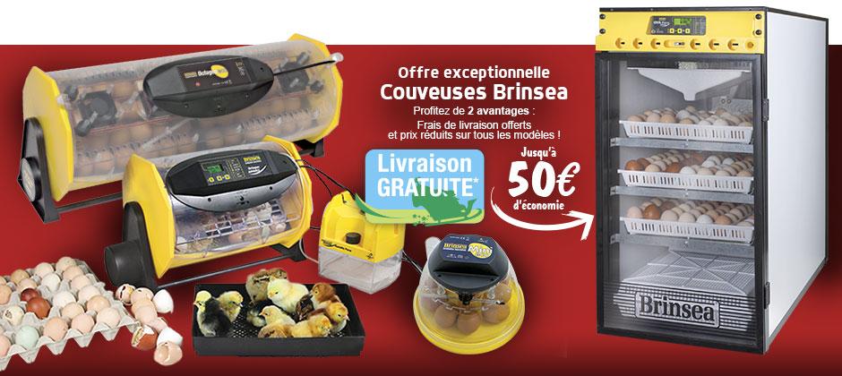 Offre exceptionnelle Couveuses Brinsea cadeau No�l