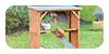 Stand Poules, une aire de jeux pour vos poules !